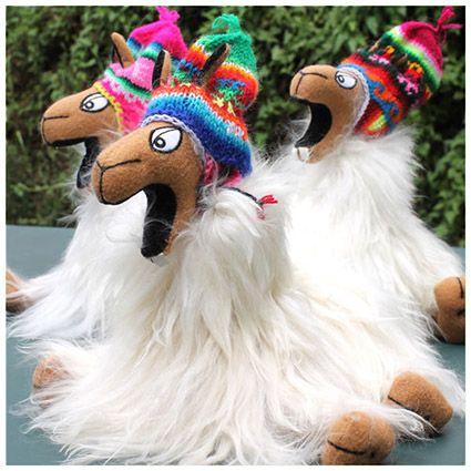 Crazy Llama medium