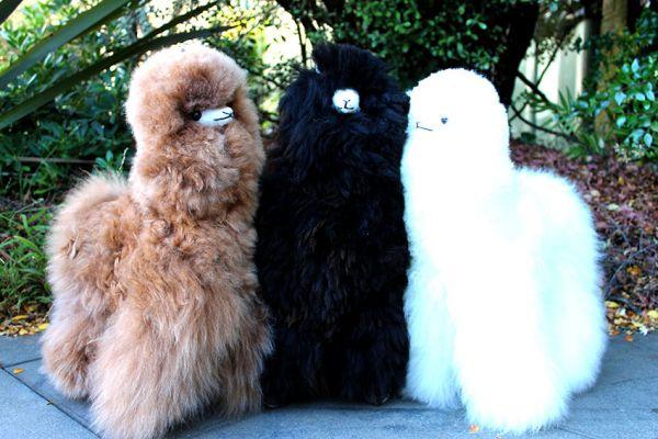 brown, black, white